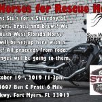 Iron Horses for Rescue Horses