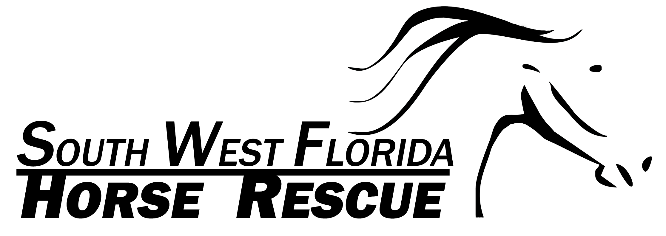 Established in 2010, SWFHR is dedicated to saving & committed to improving the lives of southwest Florida's local equines.