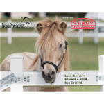 2019 SWFHR Calendar orders available!