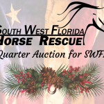Stocking Stuffer Quarter Auction