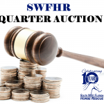 Winter Wonderland Quarter Auction
