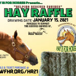 "Hay Is For Horses ""Hay Bale Raffle"""